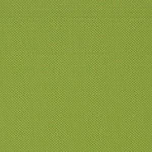 94 Lime